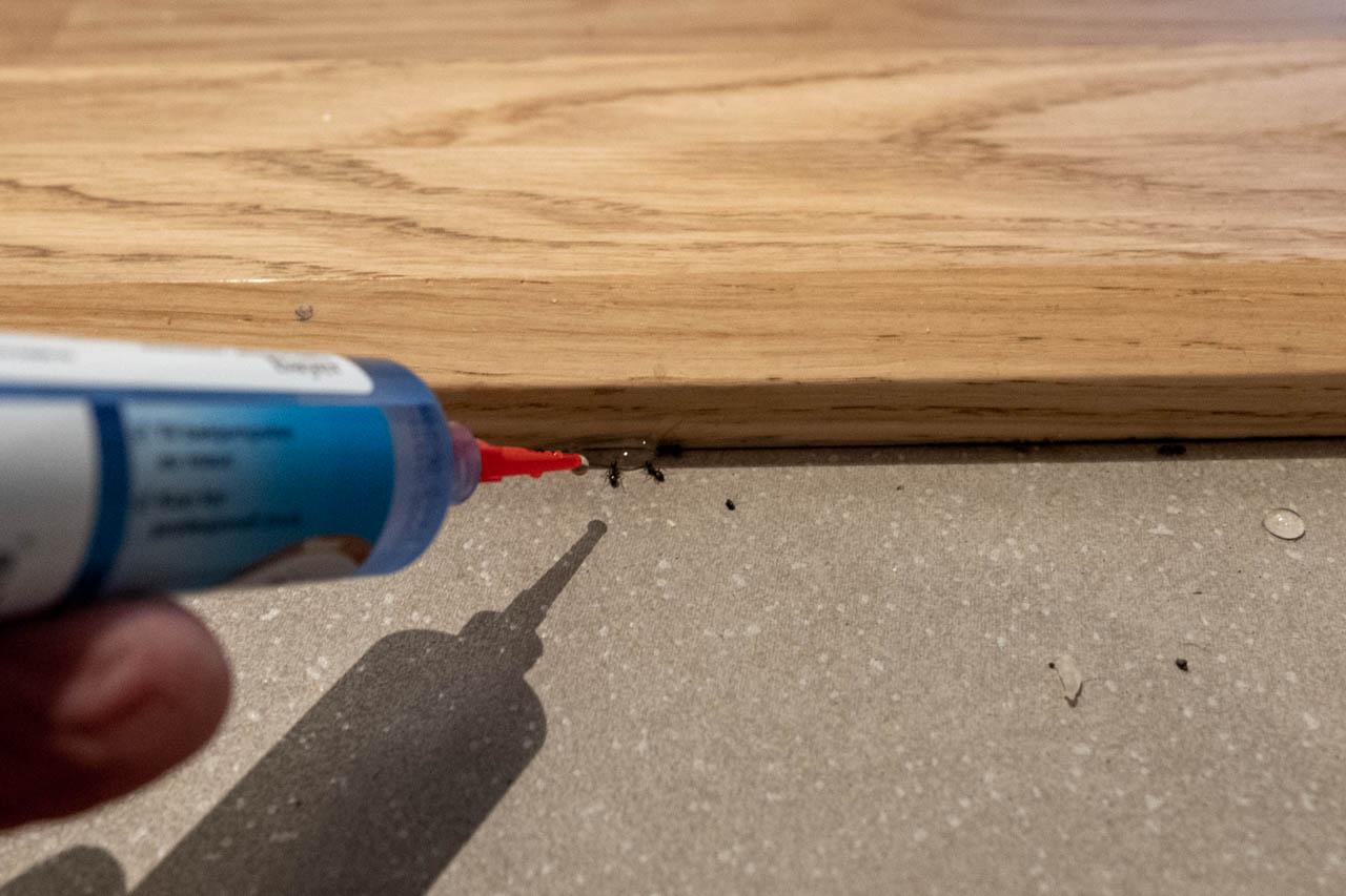 Effektiv bekjempelse av maur